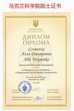 Diplom_1_300